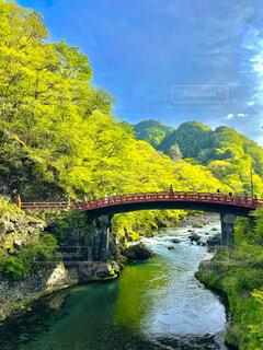 日光 神橋の写真・画像素材[4877954]