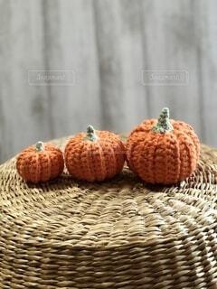 籠猫に乗ったオレンジのかぼちゃの写真・画像素材[4870384]