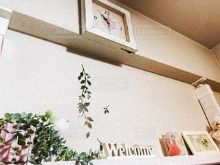 鳥の泊まる棚の写真・画像素材[4884723]