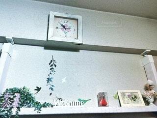 鳥の泊まる棚の写真・画像素材[4884724]