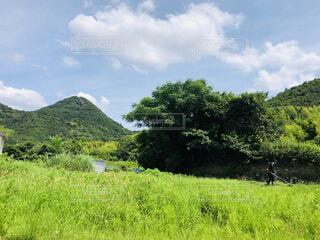草刈り風景の写真・画像素材[4873720]
