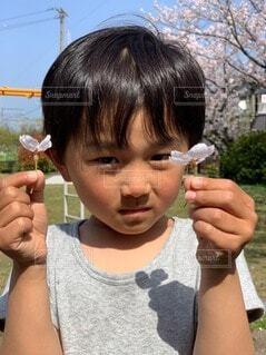 桜の花をとってきた息子の写真・画像素材[4868874]