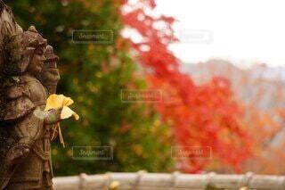 花を持っている人の写真・画像素材[4876516]