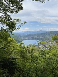 緑の中の湖の写真・画像素材[4870152]