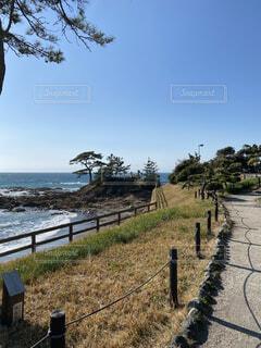 海の公園の写真・画像素材[4870301]
