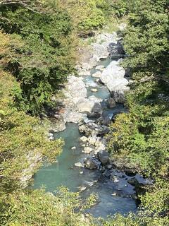 川の流れの写真・画像素材[4870577]