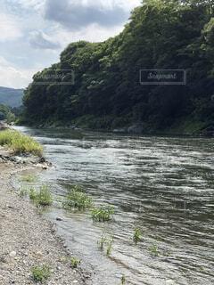 水の体の写真・画像素材[4876127]