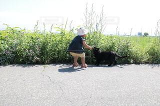 子どもと猫の写真・画像素材[4874712]