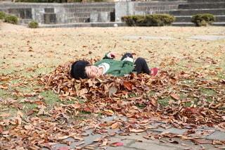 落ち葉で遊ぶ子どもの写真・画像素材[4884250]