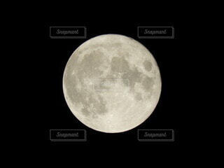 十五夜の月の写真・画像素材[4873101]