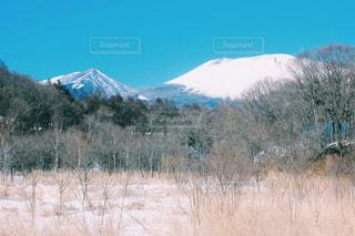 自然の写真・画像素材[238350]
