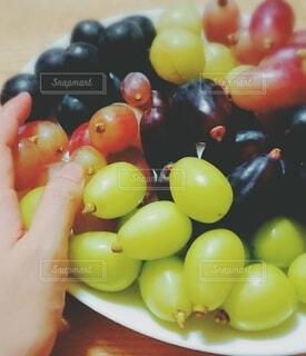 ぶどう盛りと手の写真・画像素材[4874498]