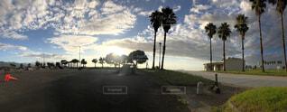 空とヤシの木の写真・画像素材[4872753]