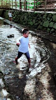 水浴びの写真・画像素材[4877615]