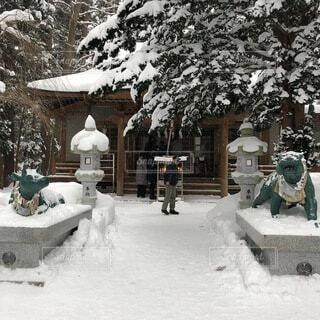 雪に覆われた家の写真・画像素材[4871528]