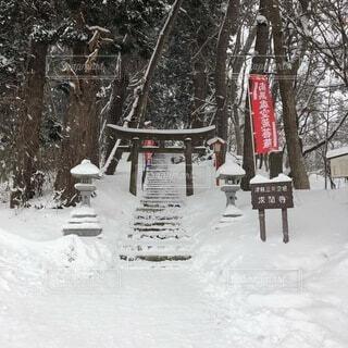 雪に覆われたベンチの写真・画像素材[4871522]