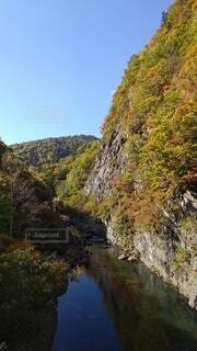 紅葉の渓谷の写真・画像素材[4875139]
