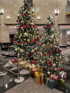 クリスマスツリーの写真・画像素材[4875687]