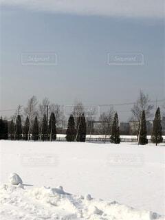 雪原の写真・画像素材[4877791]