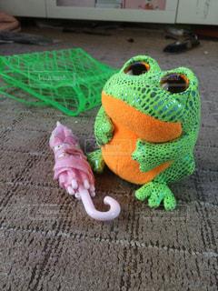 カエルの写真・画像素材[220562]