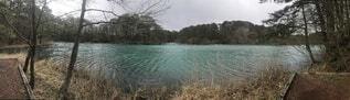 五色沼自然探勝路の写真・画像素材[4871893]