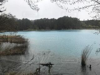五色沼自然探勝路の写真・画像素材[4871883]