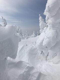 蔵王の樹氷の写真・画像素材[4880206]