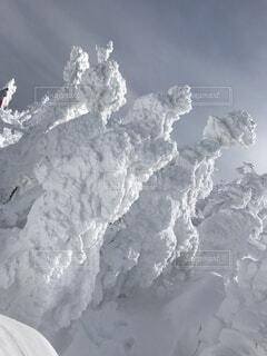 蔵王の樹氷の写真・画像素材[4880210]