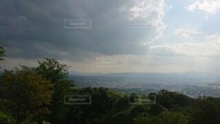 背景に山のある木の写真・画像素材[4872454]