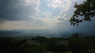 背景に山のある木の写真・画像素材[4872456]