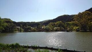 湖の写真・画像素材[4872794]