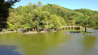 湖の写真・画像素材[4872799]