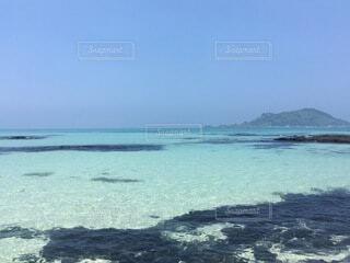 海の隣に水の体の写真・画像素材[4874896]