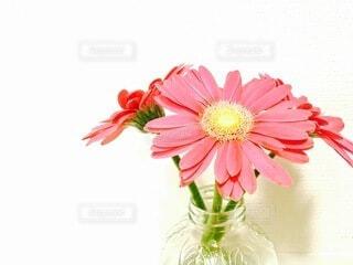 テーブルの上に花の花瓶の写真・画像素材[4874915]