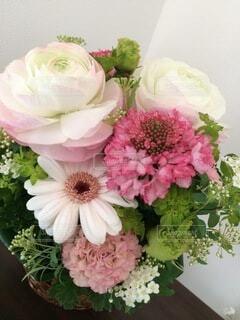 花束の写真・画像素材[4874968]