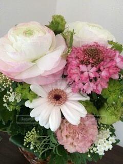 花束の写真・画像素材[4874970]