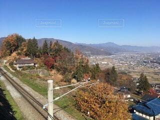 背景に山のある木の写真・画像素材[4875967]