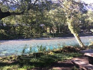 水の体の隣にある公園のベンチの写真・画像素材[4875972]