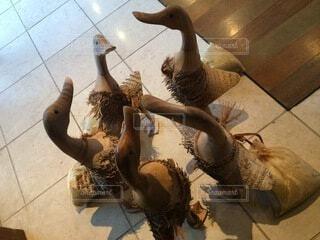 お互いの上に立っている鳥の写真・画像素材[4876010]