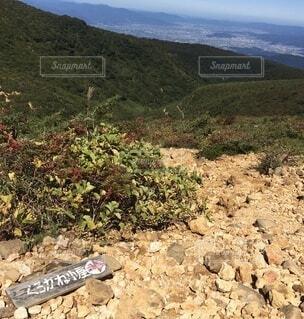 百名山 登山道の写真・画像素材[4873451]