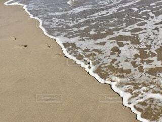 波に消される足跡の写真・画像素材[4873547]