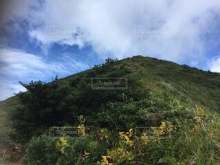 百名山 登山道からの眺めの写真・画像素材[4873562]