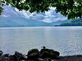 湖のほとりの写真・画像素材[4875744]