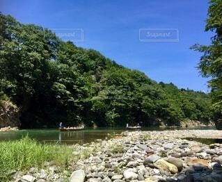 新緑の中の川下りの写真・画像素材[4875749]