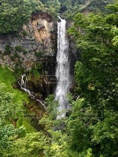 森の中の大きな滝の写真・画像素材[4875746]