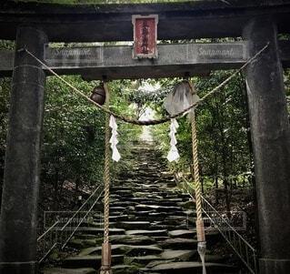 鳥居のある階段の写真・画像素材[4882418]
