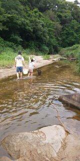 川で遊ぶ人の写真・画像素材[4873351]