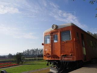 青空に映える電車の写真・画像素材[4874683]
