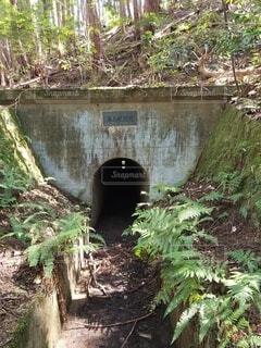 山の中のトンネルの写真・画像素材[4886141]