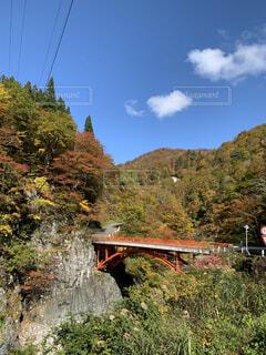 長野県の山奥の写真・画像素材[4874040]